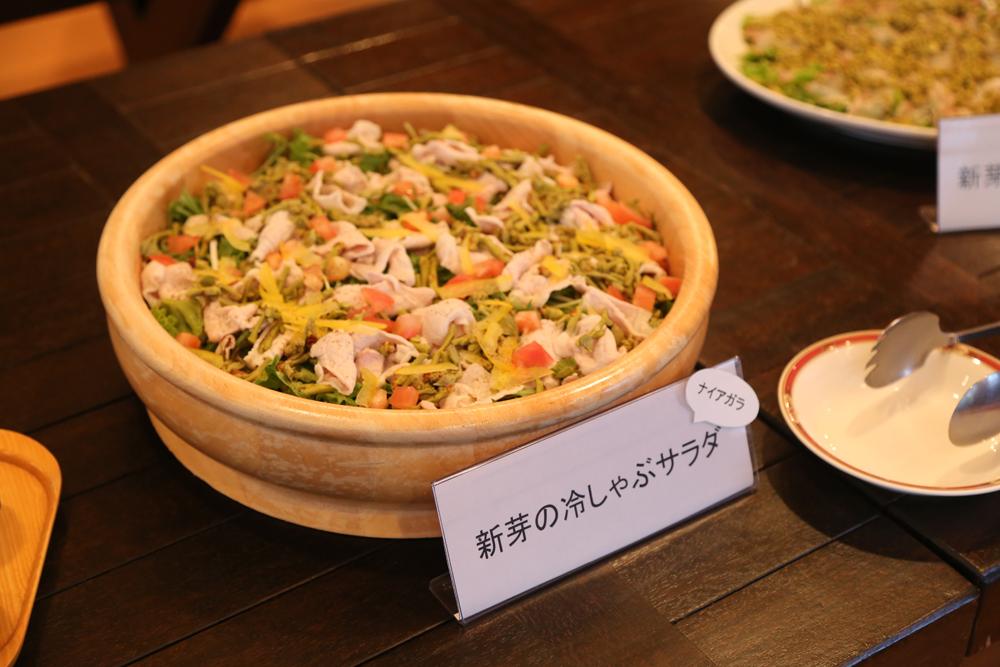 新芽サラダ