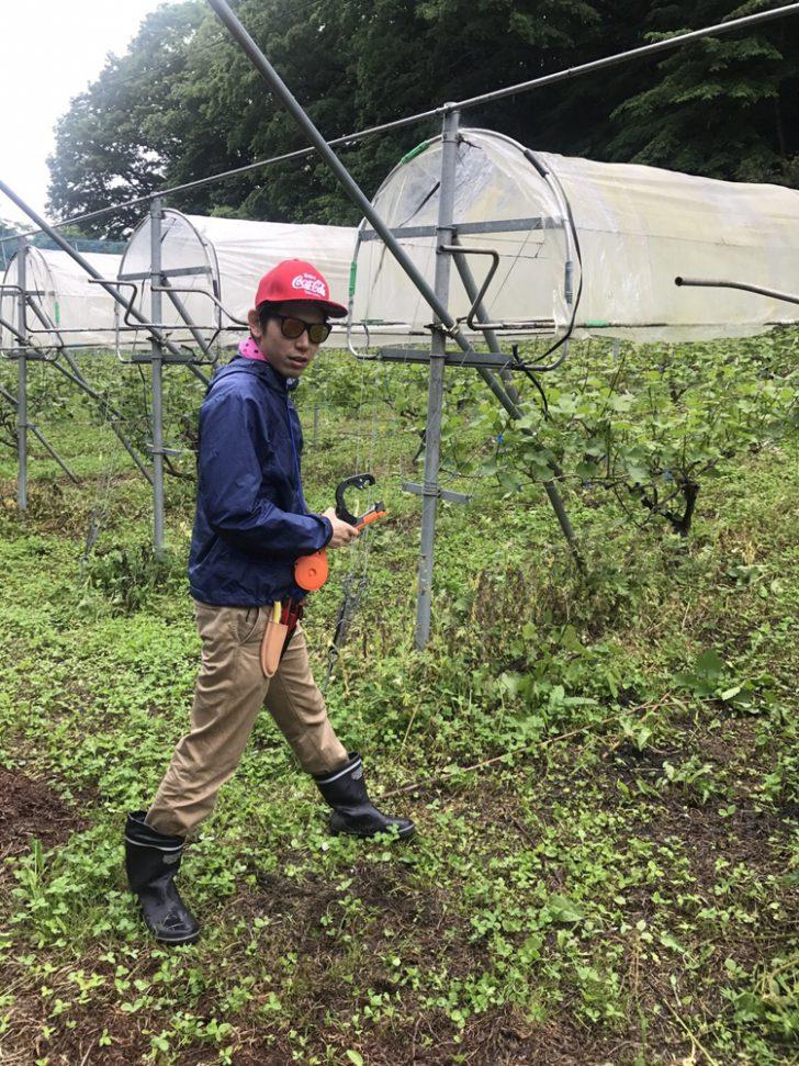 農業の服装